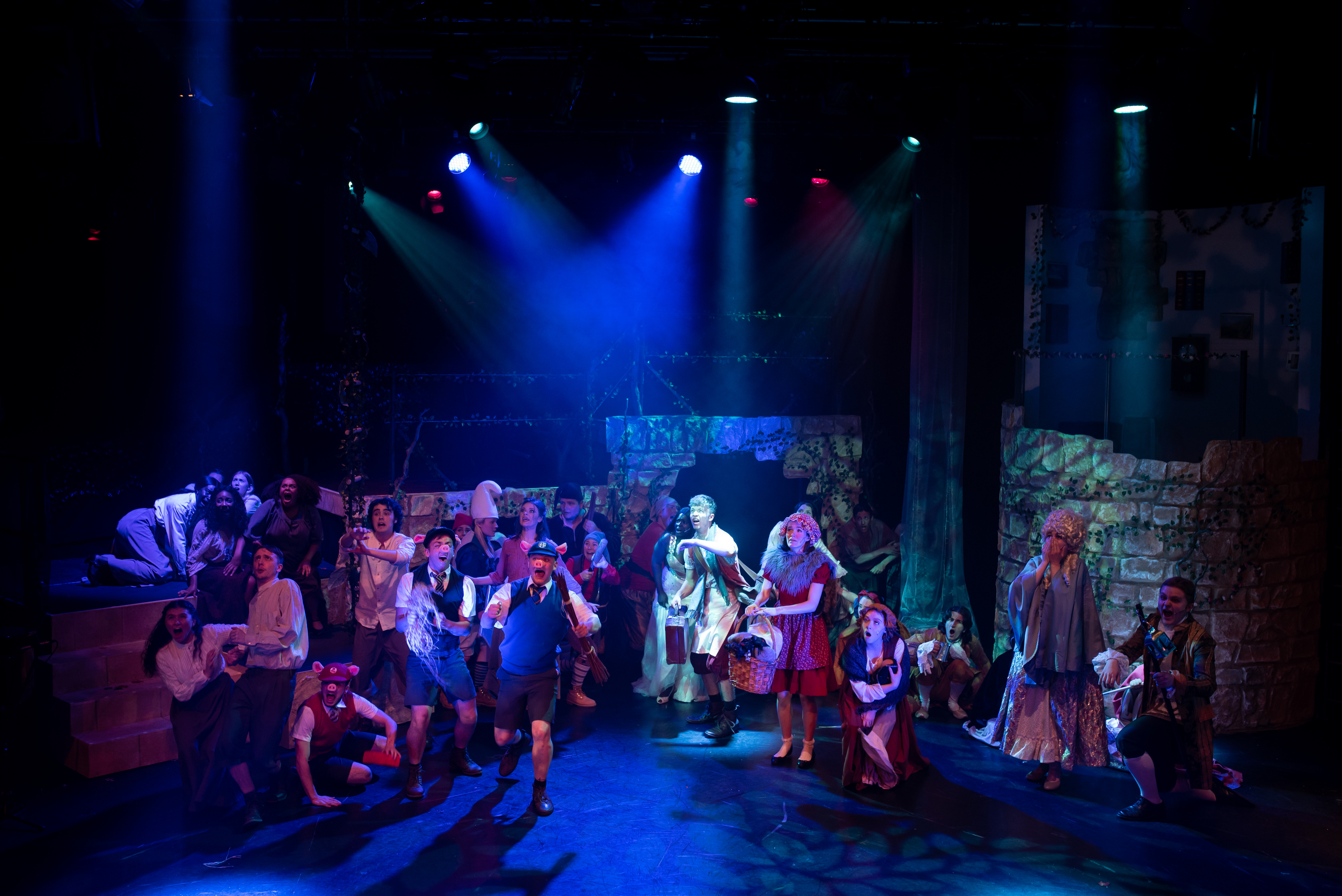 Cast of Into The Woods on stage at the Miskin Theatre
